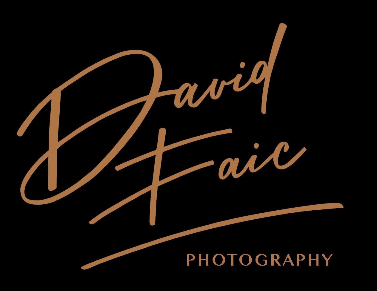 david_faic-hneda